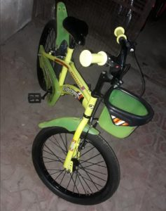 Sanrocycles: Explorer (Yellow- Green) 20'